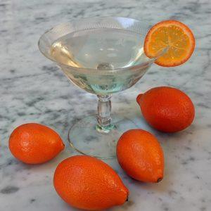 Mandarinquat Martini