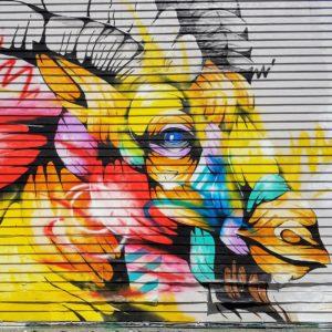 Vancouver Graffiti Ram